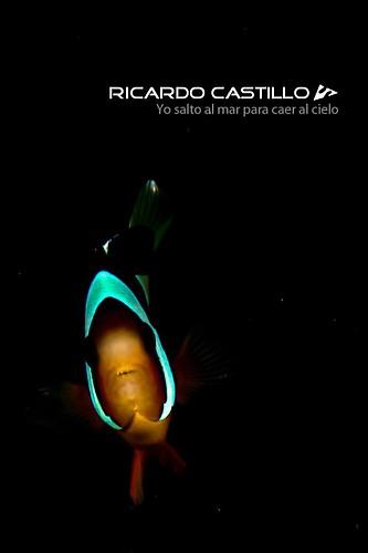 Three Band Anemonefish, Lembeh Strait, Indonesia, July 2013